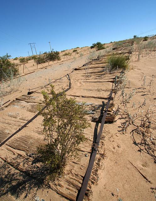 Plank Road (7988)