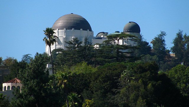 Griffith Observatory seen from Dundee Drive (2138)
