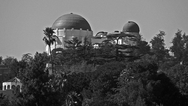 Griffith Observatory seen from Dundee Drive (2138A)
