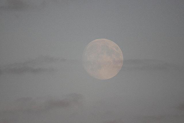 20100921 8295Tw Zingst, Bodden, Mond
