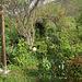 Le jardin de Persifleur