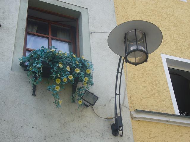 Blumenfenster mit Lampe