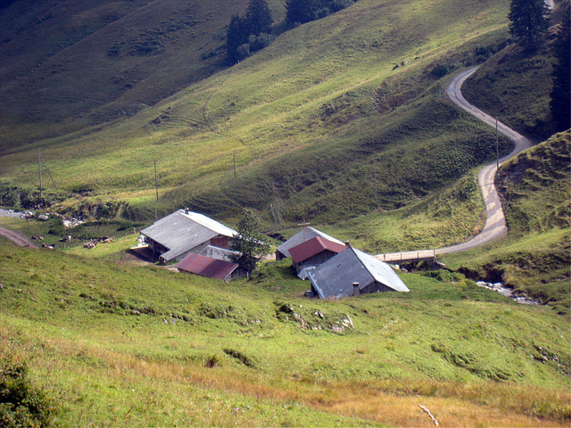 IMG 3731 Bergab, bergauf