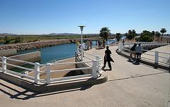 Imperial Dam (8017)