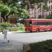 Alamo trolley / Trolleybus Alamo - San Antonio, Texas. USA - 29 juin 2010