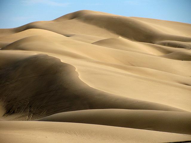 Algodones Dunes Near Glamis (2144)