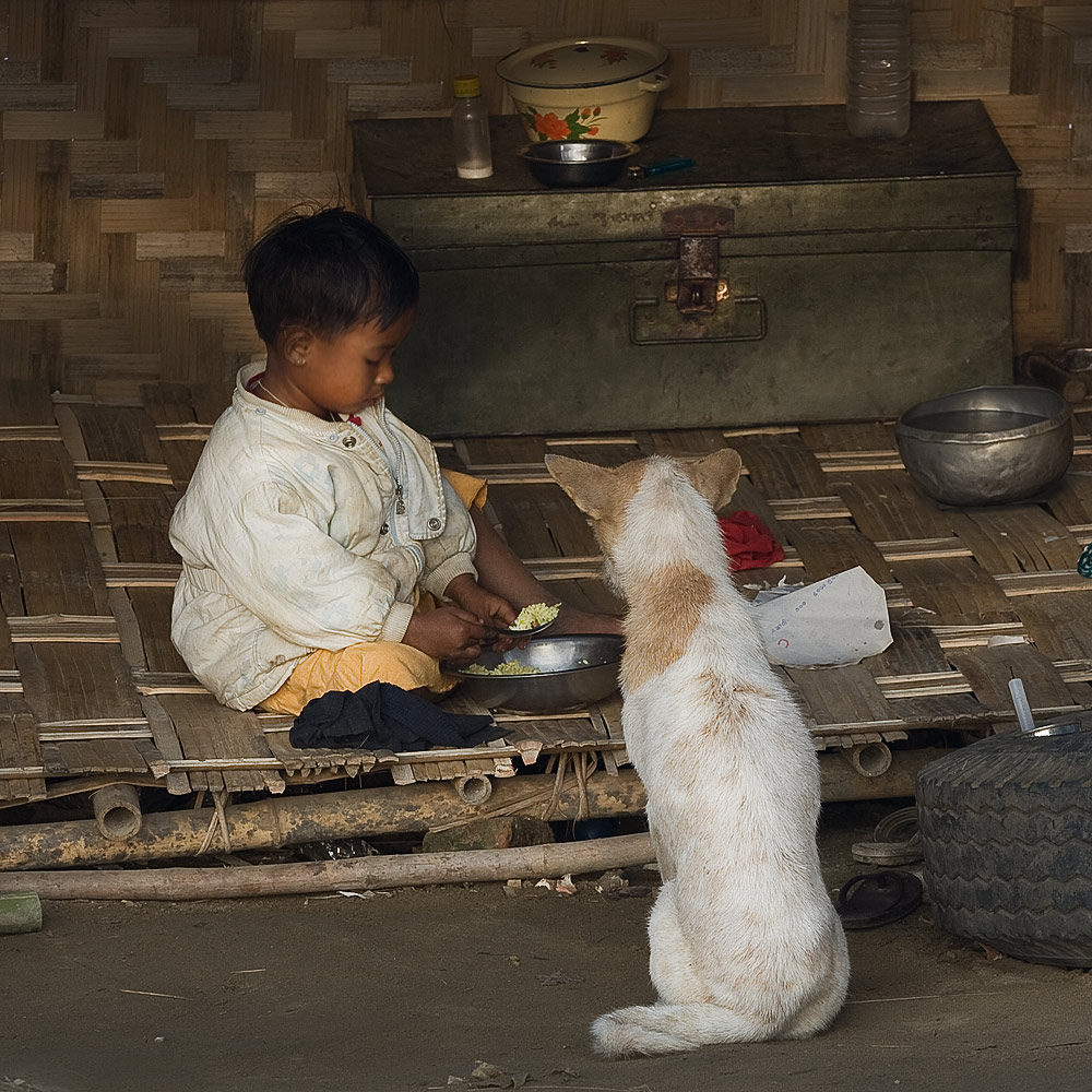 enfant-chien-2IMG 0585-Modifier