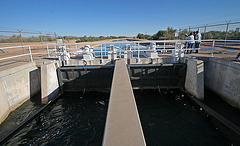 Coachella Canal Near Slab City (8030)