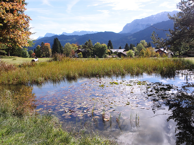 Teich am Kramerplateauweg