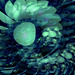 Vol au-dessus d'un nid de coucous de Milos Forman