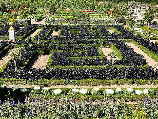 PA072576ac Kitchen Gardens Black Pimentos Plantations