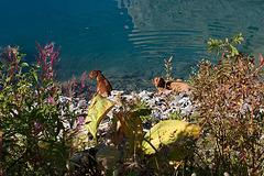 Lac du Tseuzier 1