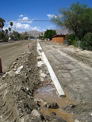 Cactus Drive Curb (6013)