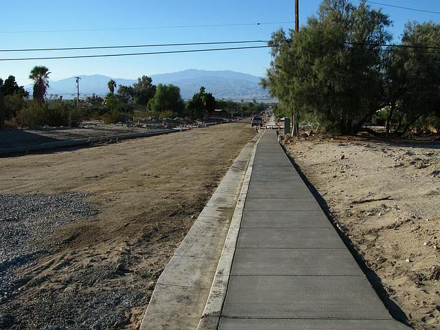 Cactus Drive (2125)