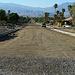 Cactus Drive (2126)