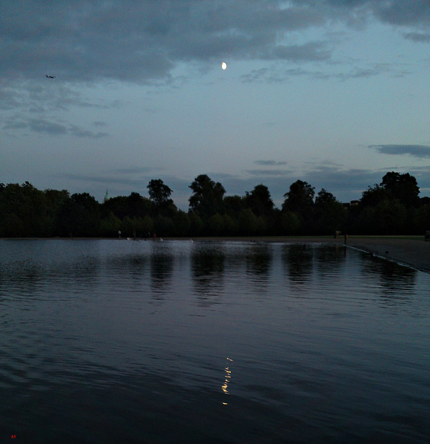 Moon over the pond