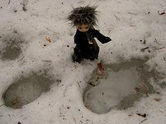 Deimos and footprints on a swamp