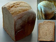 (J.S.21) Boerenbrood (blz. 72)