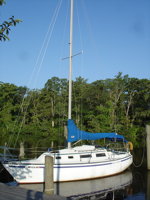 Blue tattoo sail boat /  Le voilier au tatouage bleu - Pocomoke scenic river - Maryland, USA - 18 juillet 2010