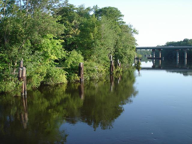 Pocomoke scenic river - Maryland, USA - 18 juillet 2010