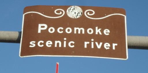 Pocomoke scenic river - Maryland, USA - 18 juillet 2010 - Recadrage