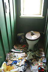 messy toilet