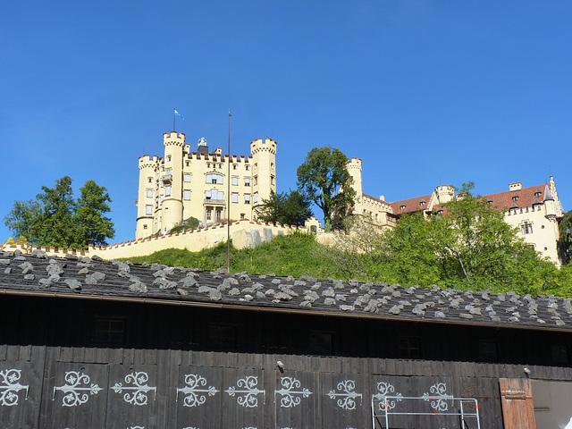 Baviera castillo de Hohenschwagau2 (2)