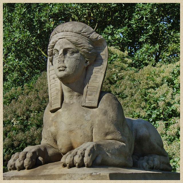 diese Sphinx vom Palais  H. C. Schimmelmann