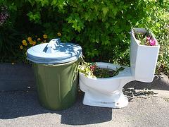 Bol de toilette botanique avec poubelle /  Botanical toilet bowl & garbage - Dans ma ville / In my hometown, Québec, CANADA. 15-07-2009