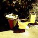Bol de toilette botanique avec poubelle /  Botanical toilet bowl & garbage - Dans ma ville / In my hometown, Québec, CANADA. 15-07-2009- Sepia postérisé
