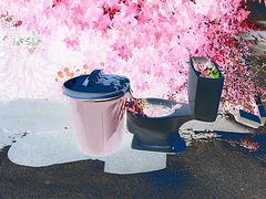 Bol de toilette botanique avec poubelle /  Botanical toilet bowl & garbage - Dans ma ville / In my hometown, Québec, CANADA. 15-07-2009- Négatif RVB