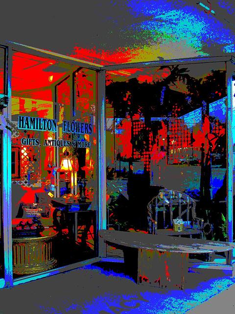 Hamilton flowers,gifts, antiques & more /  Fleurs, cadeaux, antiquités et plus - Alabama. USA - 10 juillet 2010 - Postérisation aux couleurs ravivées.