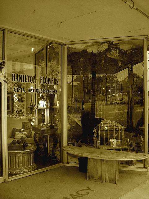 Hamilton flowers,gifts, antiques & more / Fleurs, cadeaux, antiquités et plus - Alabama. USA - 10 juillet 2010 -  Sepia