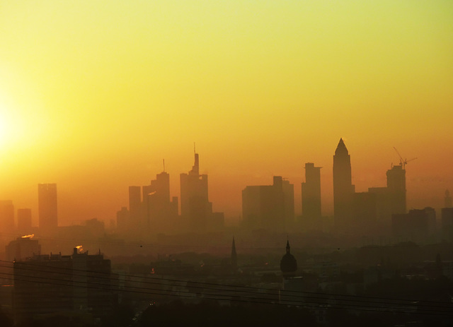 Misty Morning in Frankfurt