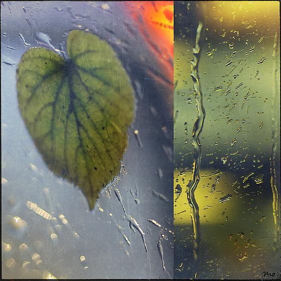 la pluie