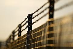 Good Friday.....Fence Friday