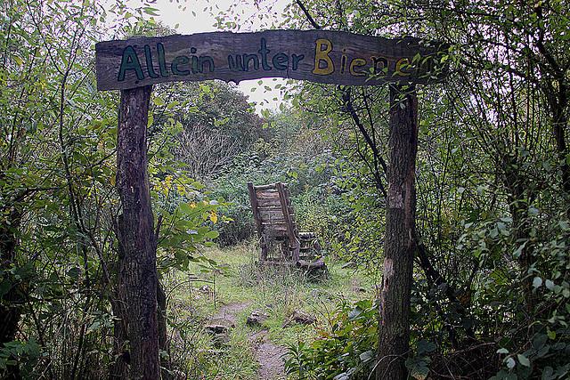 20101021 8630Aw [D~LIP] Allein unter Bienen (Bienenlauschstuhl)