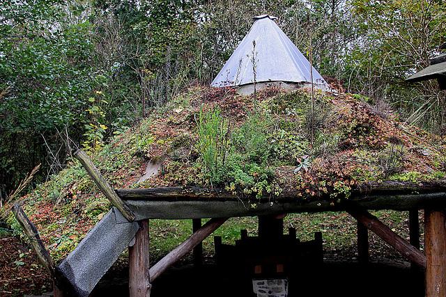 20101021 8628Aw [D~LIP] Dachbepflanzung