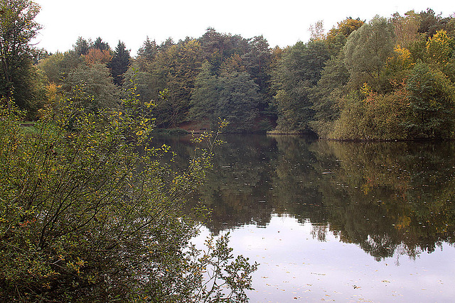 20101013 8432Aaw Hasselbach-Stausee