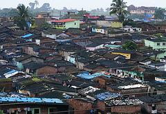 Shanty shanty