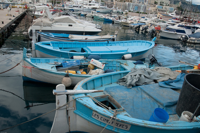 only blue fishing boats