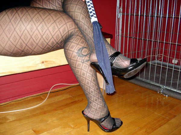 Lady Caliente de Montréal /  Flog et talons hauts - Flog and high heels.