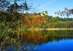 Herbststimmung am Weiher