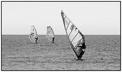 A trio of windsurfers