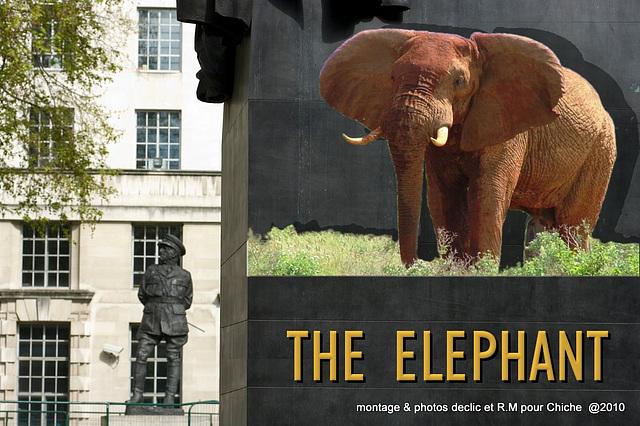 Éléphant par  R.M  et pour chiche