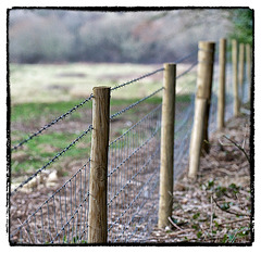 HFF - New fence