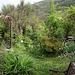 Le jardin de Persiflore  (5)