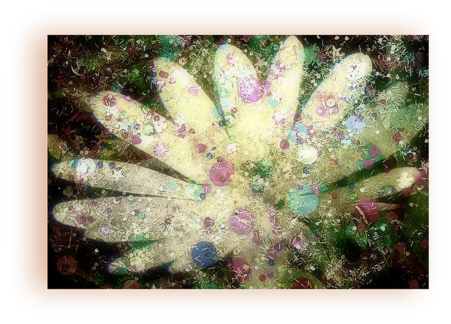 fleur des fées