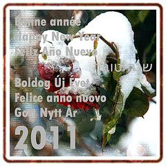 voeux2011