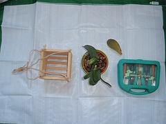 orchidées : questions, problèmes et conseils de culture 9940075.25fa8d6d.240